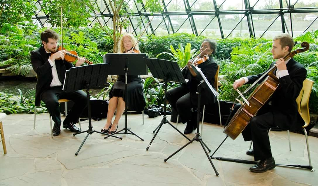 String Quartet Musicians Playing Music at the Southfield Town Center Atrium