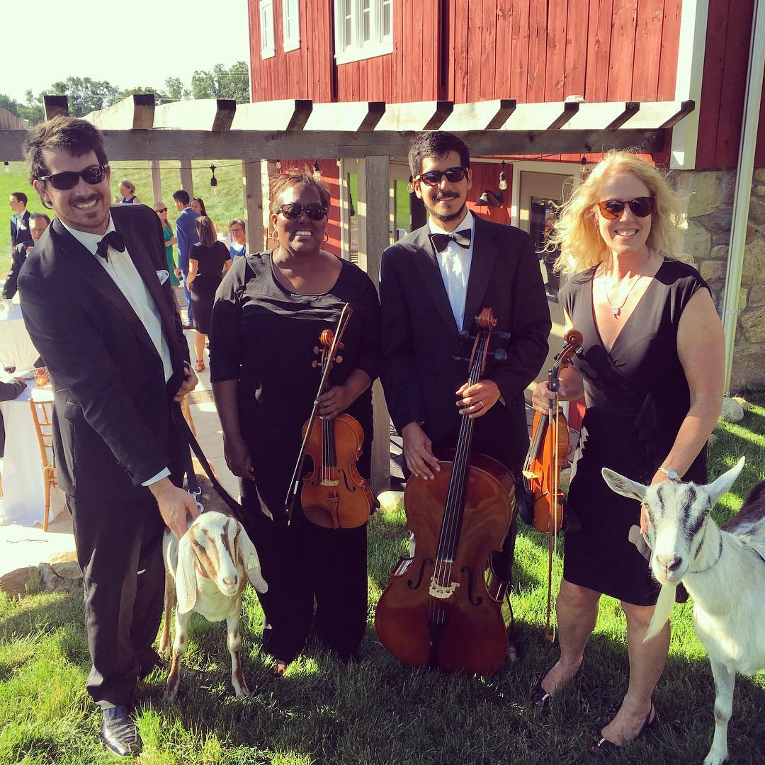 String Quartet Entertainment for Private Parties in Detroit, MI